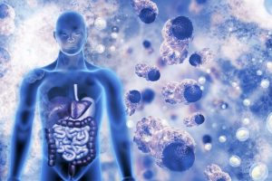 ¿Cómo actúan las vacunas en el sistema inmunológico?