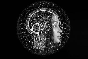 Alimentos tóxicos para el cerebro humano