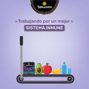 alimentos para reforzar el sistema inmunológico